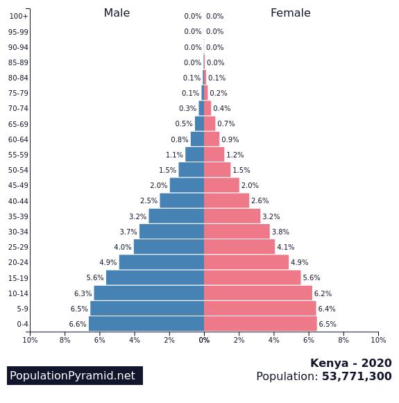 population pyramid kenya
