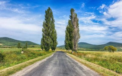 A cheap Plan B in rural Hungary